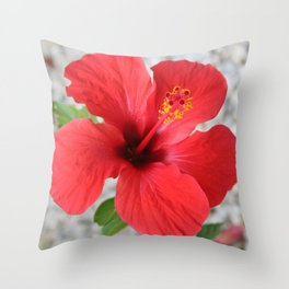 A Stunning Scarlet Hibiscus Tropical Flower Throw Pillow