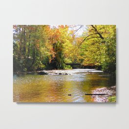 Pebble Creek Metal Print