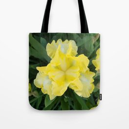 Yellow Iris by Teresa Thompson Tote Bag