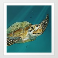 sea turtle Art Prints featuring Sea Turtle by Michelle Kondrich