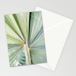 Fanned Palms Stationery Cards