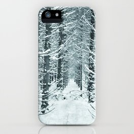 Nordic Kingdom iPhone Case