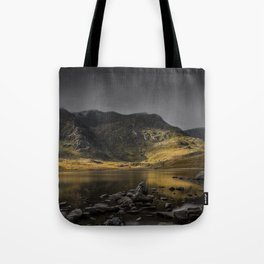 A Light in the Shadows Tote Bag