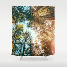 California Redwoods Sun-rays and Sky Shower Curtain