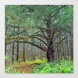 Can you Spot the Elf? Canvas Print