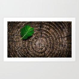 Green leaf Brown wood Art Print