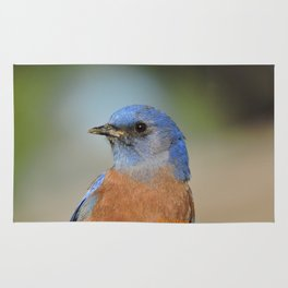 Bluebird in La Verne Rug