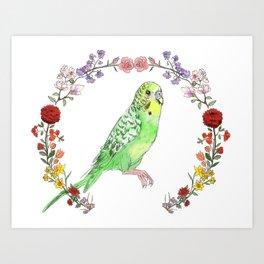 Parakeet in Green Art Print
