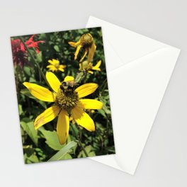 Mt. Mitchell Bee Stationery Cards