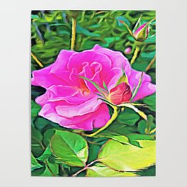 Pink Flower of Graceful Beauty Poster