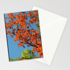 My Fall Leaves Stationery Cards