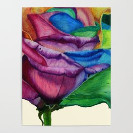 Open Up (Rainbow Rose) Poster