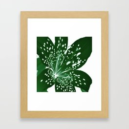 Lily Infrared In Green Framed Art Print