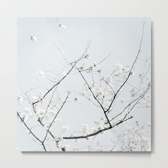 Ode to Cherry Blossoms Metal Print