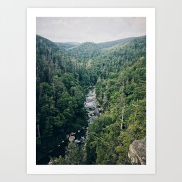 Another Mountain View Art Print