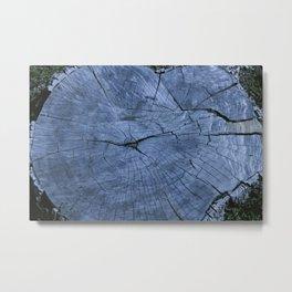 Wood Tree Stump  Metal Print