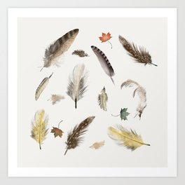 inner nature (feathers and leaves Art Print