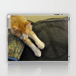 Peaceful Cat Laptop & iPad Skin
