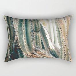 Desert Ombre Rectangular Pillow