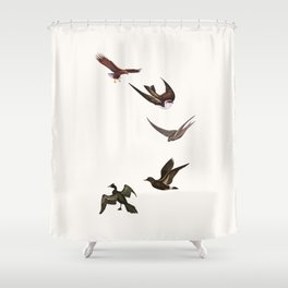 Holding Pattern Shower Curtain