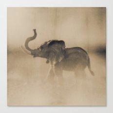 The elephant Canvas Print
