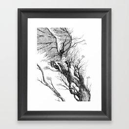 tree nymph Framed Art Print