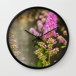 Seonyudo Wall Clock