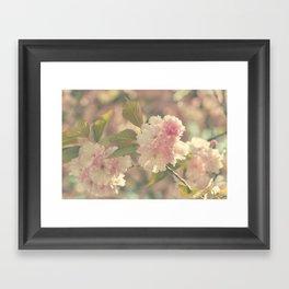 Vintage Blossoms Framed Art Print