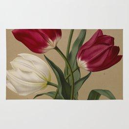 Arendsen, Arentine H. (1836-1915) - Haarlem's Flora 1872 - Single Early Tulips 2 Rug