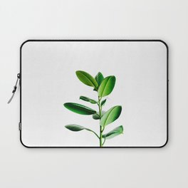 Greenery (Color) Laptop Sleeve