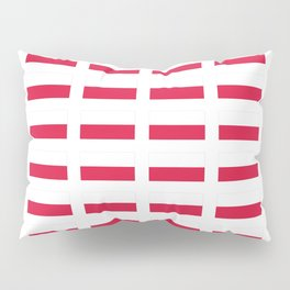 Flag of poland – poland,Polish,Polska,pole,Warsaw,krakow Pillow Sham