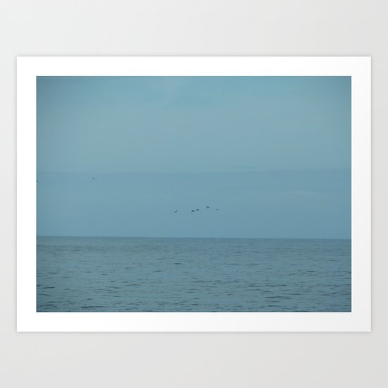 Seagulls flying in the blue Art Print