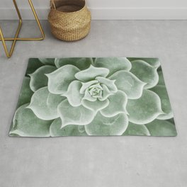 Succulent lover close up view Rug