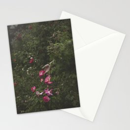 Focus on Beauty Stationery Cards