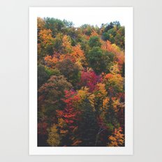 Spectrum of Fall Art Print