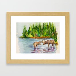Isle Royale National Park Framed Art Print