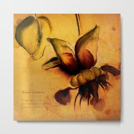 Cupuaçu flower watercolor - Brazilian tropical fruit Metal Print