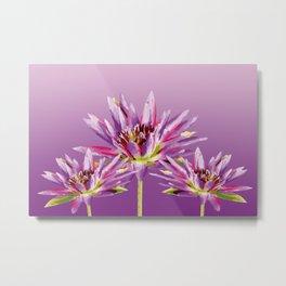 Lotos Flowers violet II Metal Print