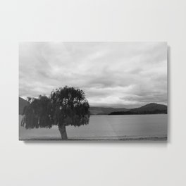 Tree and Lake Metal Print