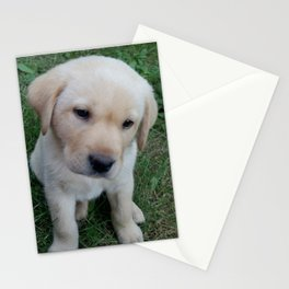 Whatever you want Lab puppy Stationery Cards