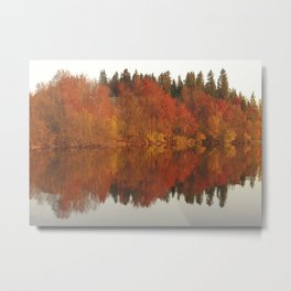 Colorful autumn trees reflection in the lake Metal Print