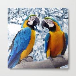 Macaws chatting Metal Print