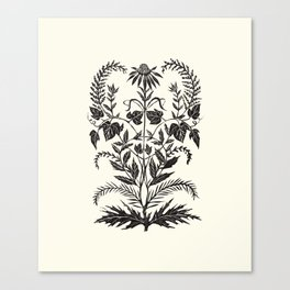 Wild Weeds Canvas Print