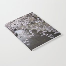 cherry blossoms in Japan Notebook