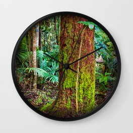 New and old rainforest growth Wall Clock