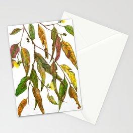 Australian Gum Leaves Stationery Cards