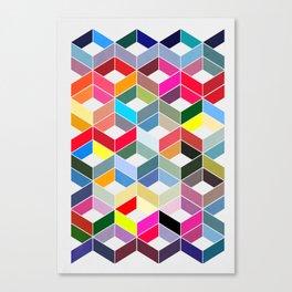Myriad 01. Canvas Print