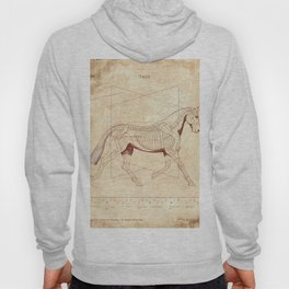 Da Vinci Horse: The Trot Revealed Hoody