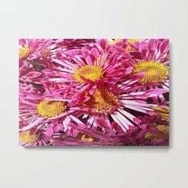 Pink Starburst Flowers Metal Print