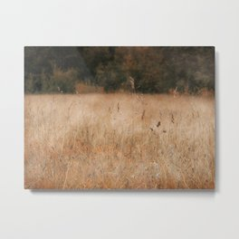 Äspo Ecological Country Metal Print